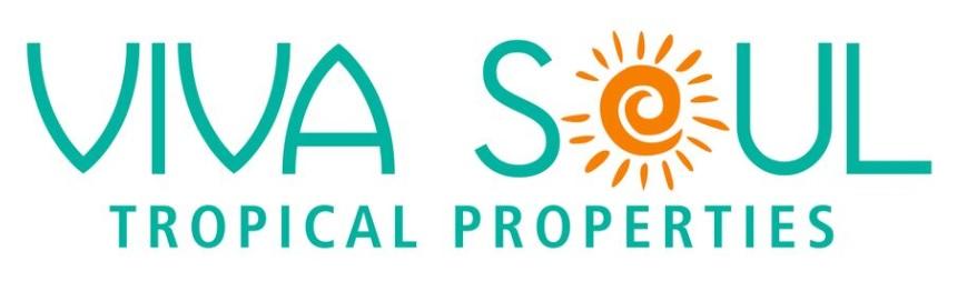 Viva Soul logo-2